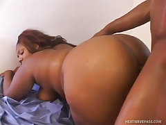 Pretty black plumper gets good slamming